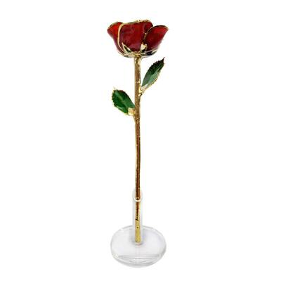 Single Rose Display